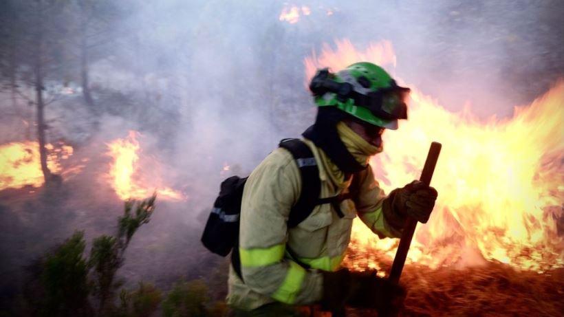 Medios terrestres y aéreos del MITECO tratan de contener desde el jueves el fuego que asola la zona de Sierra Bermeja (Estepona)